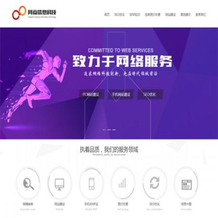 紫色网络公司网站模板