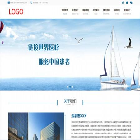 蓝色国外医疗中介网站模板