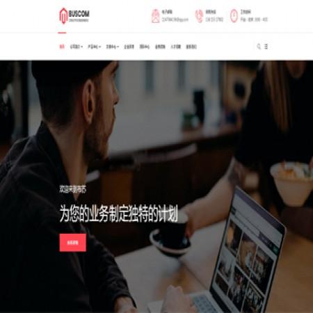 红色大气集团公司网站模板